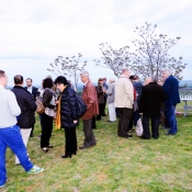 great-tokaj-wine-auction-2014-sb-aperitif-bakos-016