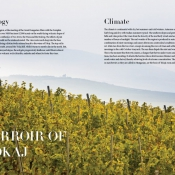 Confrérie de Tokaj - On the Golden Route