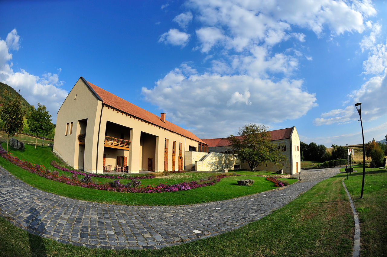 Béres Winery photo