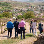 Vineyard tour - Confrerie de Tokaj photo