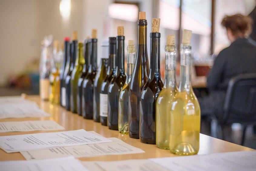 Rekordszámú bor, rekord becsérték